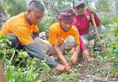 Pers Rilis: Memaknai Hari Pahlawan dengan Menanam Pohon di Gunung