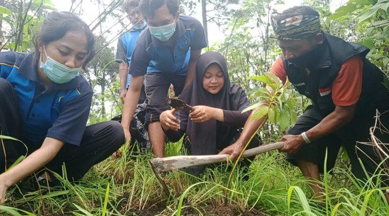Pers Rilis: Hari Gunung Sedunia, LINKSOS Giatkan Penanaman Pohon
