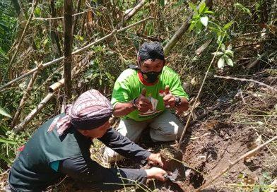 PPBI Tanam Pohon Pule di Gunung Wedon